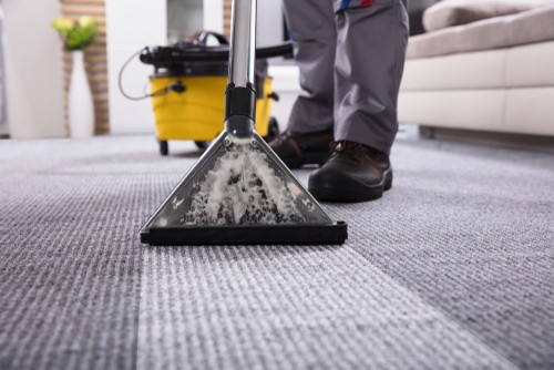 Why Should I Hire Professional Carpet Cleaning Service?